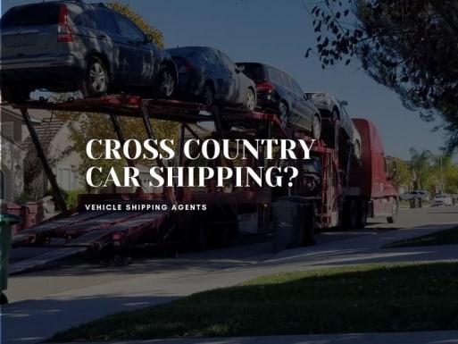 vehicle transporter extraordinaire sweet logistics murrieta ca